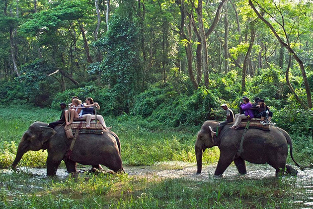 Chitwan Jungle Safari - nepal classic tour packages