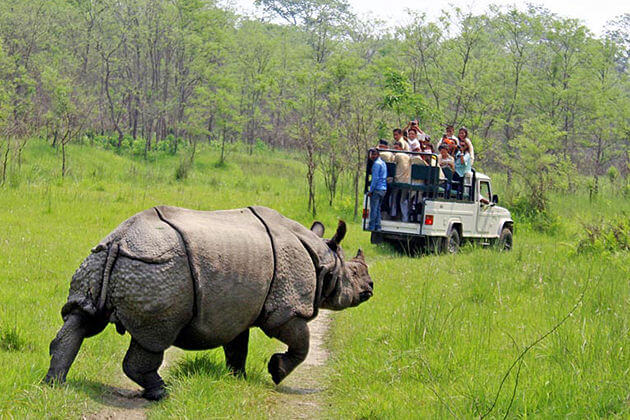 Chitwan National Park – 4 Days