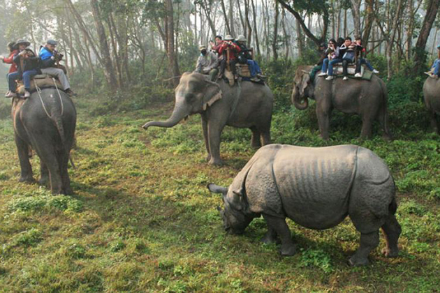 Chitwan National Park - family holiday tour in nepal