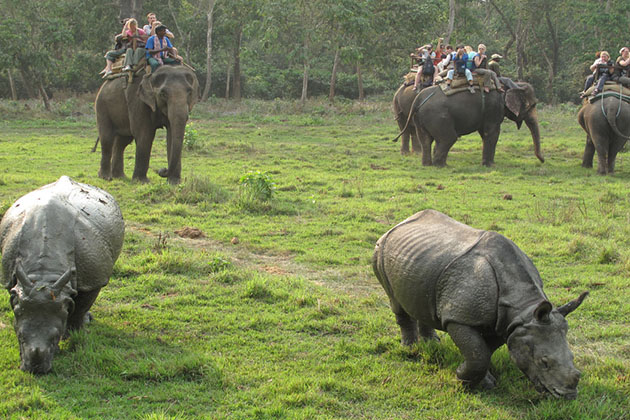 Good time visit nepal chitwan