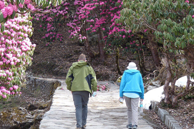 trekking in summer - nepal best time to visit