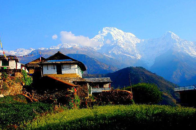 president camp tailor made tour nepal