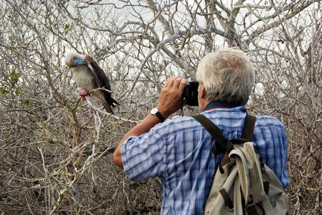 bird watching - chitwan national park things to do