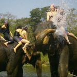 chitwan national park - golden triangle nepal