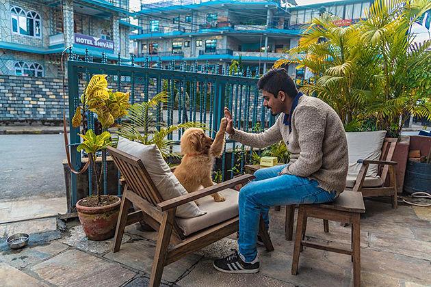 hotel blossom - nepal hotel in pokhara