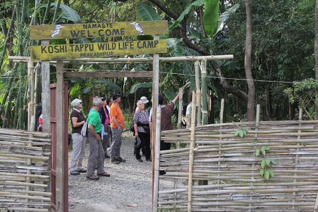 Koshi Tappu Wildlife Reserve - jungle safari in nepal