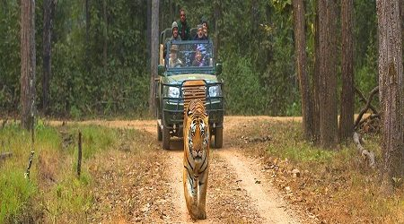 Bardia National Park – 5 Days