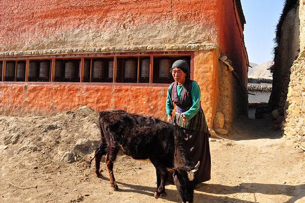 Ghami - best upper mustang trek