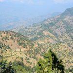 Patle - nepal shaman